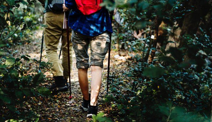 trail walking hiking