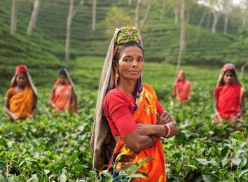 woman in india standing in tea plantation